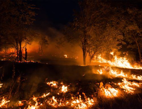 Tenaja Fire in Murrieta CA near La Cresta